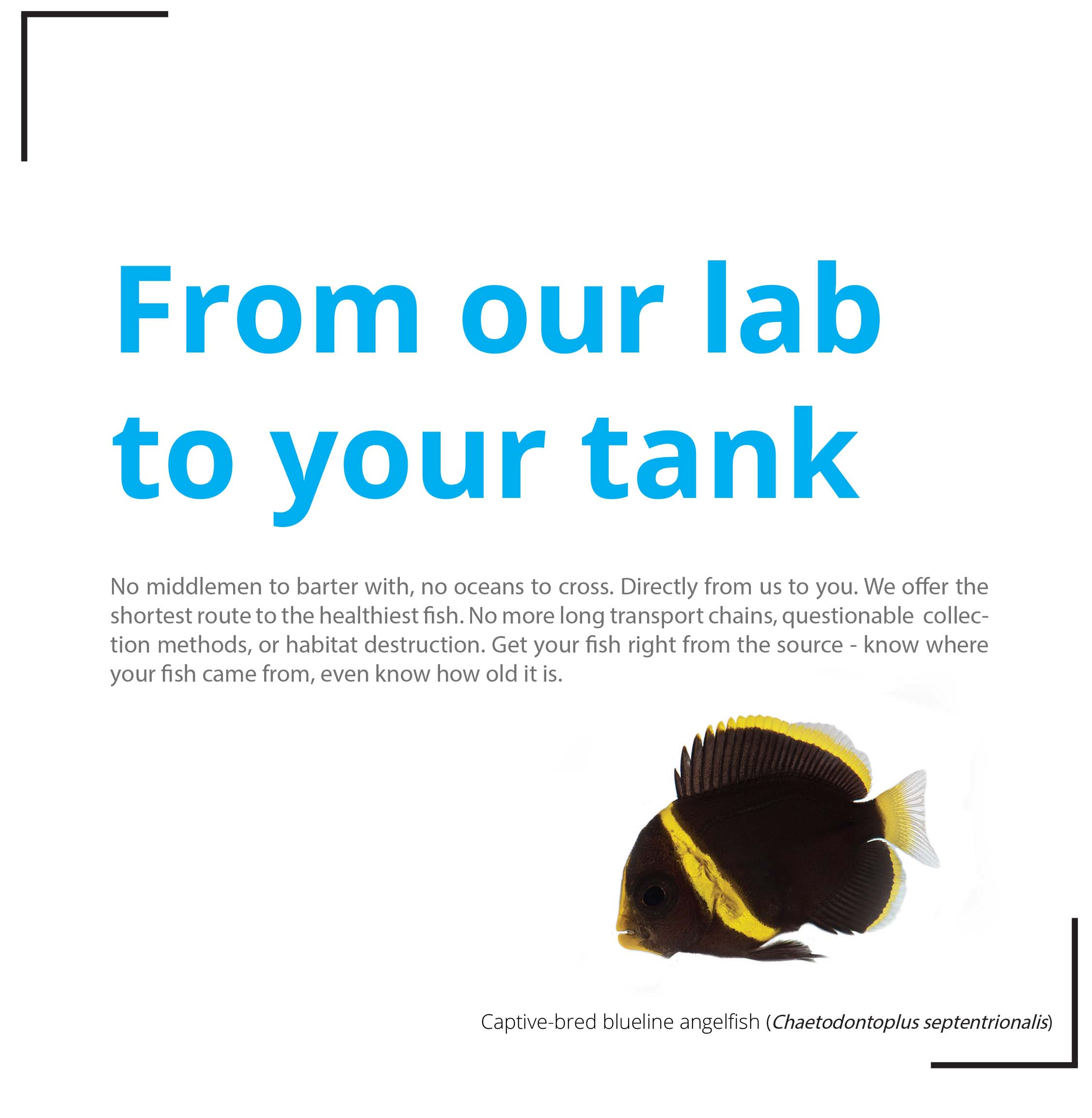 our-lab-to-your-tank.jpg